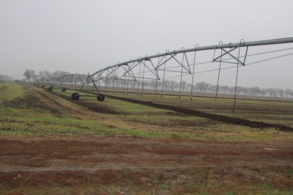 Агроходлинг KSG Agro почав роботу над програмою зрошення сільськогосподарських земель фото, ілюстрація