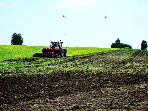 Аграрний потенціал України використовується не за призначенням, - економіст фото, ілюстрація