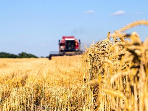 «Пора закончить с дискриминацией сельхозпроизводителей», - Всеукраинский аграрный форум фото, иллюстрация