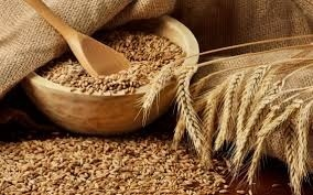 До 2020 року Україна зможе збирати 100 млн тонн зернових на рік фото, ілюстрація