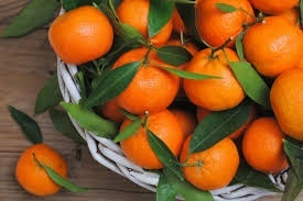 T.B. Fruit откроет в Грузии завод по переработке мандаринов фото, иллюстрация