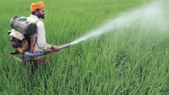 Правительство Индии отсрочило введение запрета на использование глифосата фото, иллюстрация