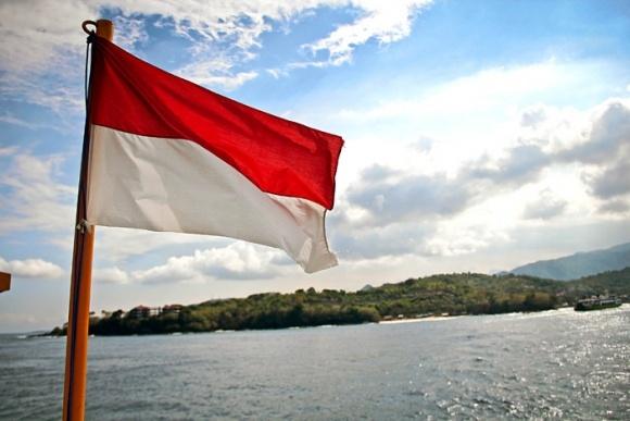 Украина будет экспортировать зерно в Индонезию фото, иллюстрация