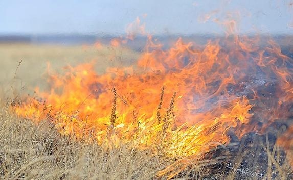 Коммерческое сельское хозяйство предотвращает пожары. Но это не всегда хорошо фото, иллюстрация