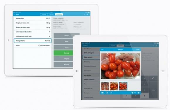Инновационное приложение QC One поможет контролировать качество свежей продукции фото, иллюстрация