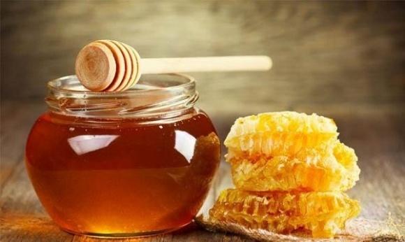FAO запустит программу по пчеловодству в двух регионах фото, иллюстрация