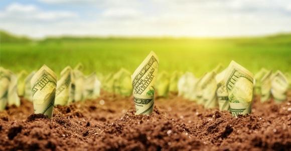 Збільшення інвестицій в АПК після відкриття ринку землі - це міф, - експерт фото, ілюстрація