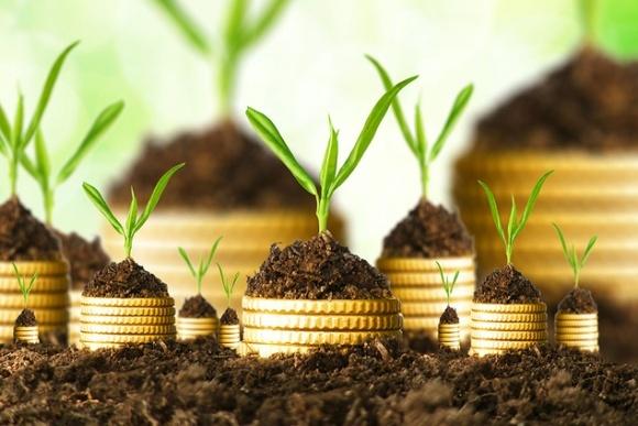 АПК может придать импульс развитию других отраслей, - фонд Блейзера фото, иллюстрация