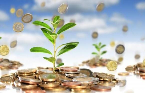 Інвестиції під «органіку» отримати реально, але не всі виробники готові фото, ілюстрація