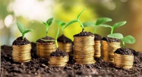 Полтавщина вошла в пятерку областей с наибольшим объемом капитальных инвестиций в АПК фото, иллюстрация