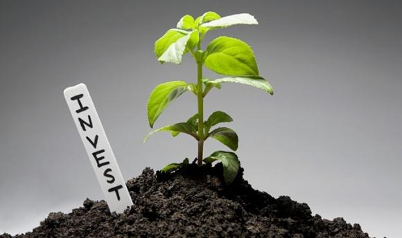 5 кроків до залучення мільярдних інвестицій в АПК фото, ілюстрація
