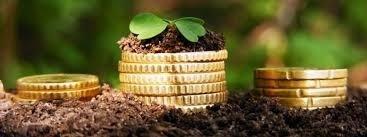 Інвестиції в український  аграрний бізнес у 2017/18 МР зросли на 40% фото, ілюстрація