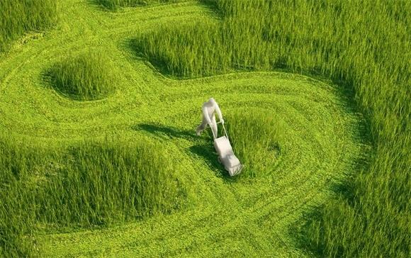 Аграрний бізнес-клімат в Україні сягнув рекордного показника фото, ілюстрація