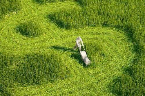 Створена платформа зі сталого агробізнесу – Sustainable Agribusiness Forum (SAF Україна) фото, ілюстрація