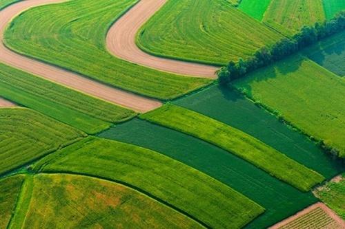 Как IT-инновации меняют агросектор Украины? фото, иллюстрация