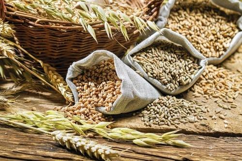 У Черкаській області відкрито завод з переробки зернових фото, ілюстрація
