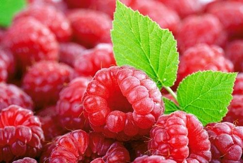 Рекордне здорожчання: в Україні малина піднялась у ціні фото, ілюстрація