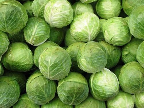 Україна почала імпортувати ранню капусту із Узбекистану фото, ілюстрація