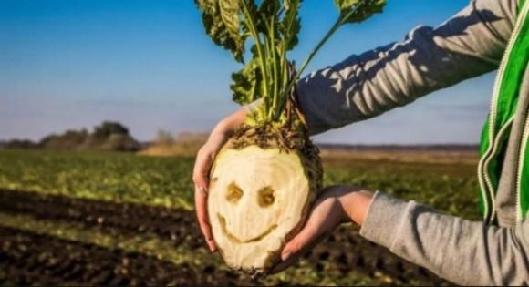 Немецкие инвесторы обратились к председателю СБУ Баканову по ситуации с ООО «Капитал-Агроинвест» фото, иллюстрация