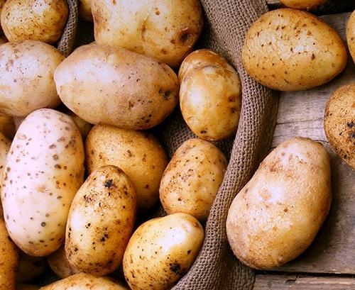Ціни на картоплю в Україні - найвищі за останні 10 сезонів фото, ілюстрація