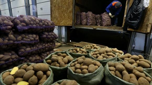 Ціна на картоплю б`є всі рекорди  фото, ілюстрація