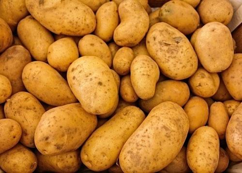 Імпорт картоплі з Білорусі збив ціни в Україні фото, ілюстрація