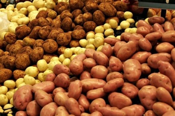 Отечественные супермаркеты заинтересовались мытым картофелем фото, иллюстрация
