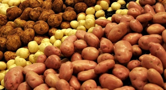 Эксперт объяснил, почему украинский картофель дороже зарубежного фото, иллюстрация