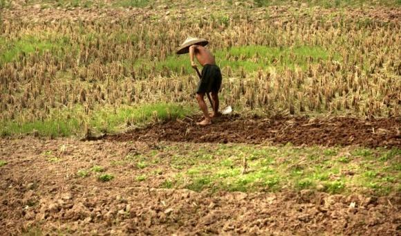 У Китаї стратили фермера, який убив чиновника гвоздеметом фото, ілюстрація