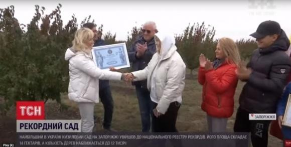 Наибольший кизиловый сад Европы находится в Украине  фото, иллюстрация