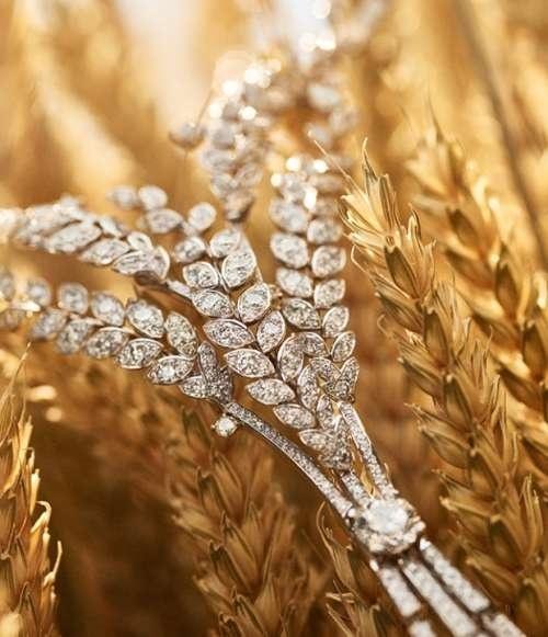 Колоски пшениці від Chanel: діамантові зерна і платинові стебла (ФОТО) фото, ілюстрація
