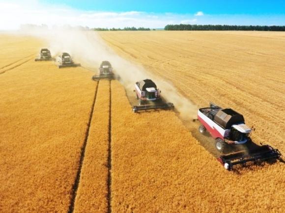 На Днепропетровщине уже собрали 2 млн тонн пшеницы фото, иллюстрация