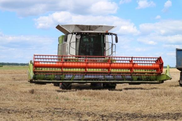 В Україні вже зібрано майже 27 млн тонн зерна фото, ілюстрація
