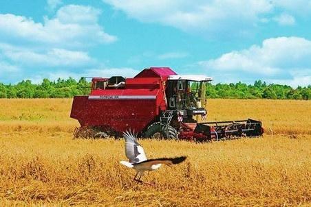 Чернігівщина стимулює трудове суперництво між аграріями фото, ілюстрація