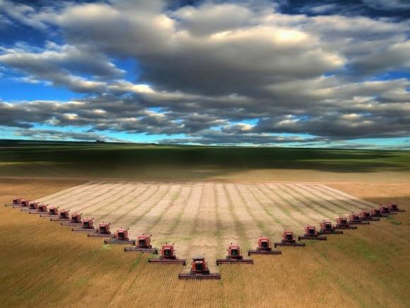 Транснациональные корпорации боятся развития украинских агрохолдингов, - Л.Козаченко фото, иллюстрация