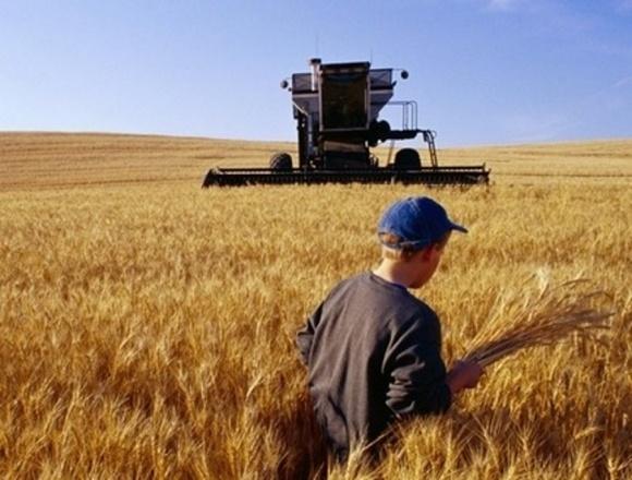 Кабмін компенсував аграріям за польові роботи мінімум витрат фото, ілюстрація