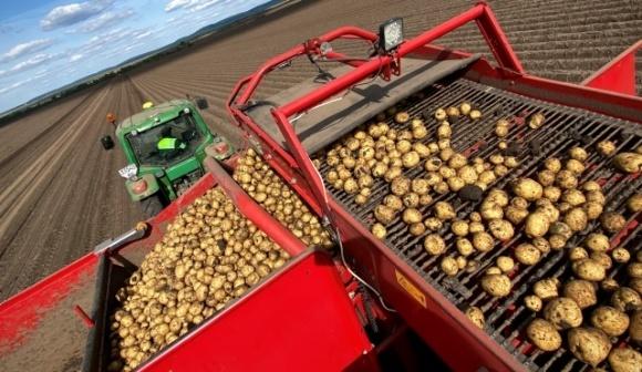 «Континентал Фармерз Групп» собирает урожай картофеля фото, иллюстрация