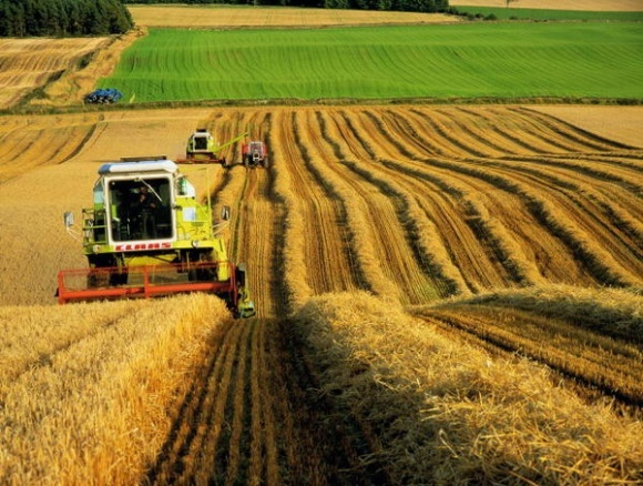 ВРУ предлагает перейти на единую форму для сельхозкооперативов фото, иллюстрация