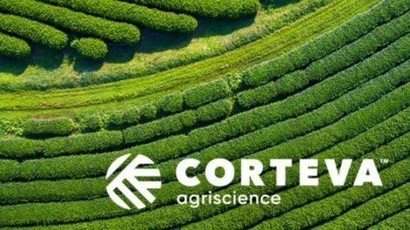 Corteva повідомляє про підсумки 1 півріччя і покращує річний прогноз фото, ілюстрація