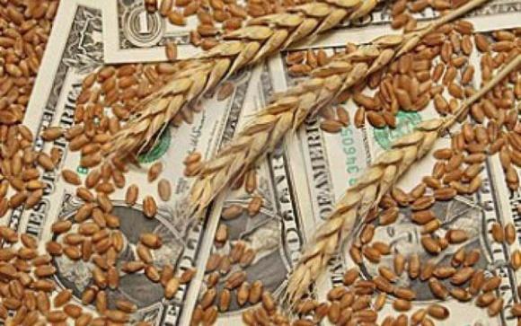 Коррупционная составляющая при экспорте зерна снизилась до нуля фото, иллюстрация