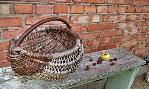 В Австрії - величезні втрати врожаю фруктів і ягід фото, ілюстрація