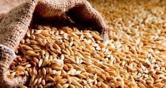 На Миколаївщині у фермерів вкрали сільгосппродукції на загальну суму понад 1 млн грн фото, ілюстрація