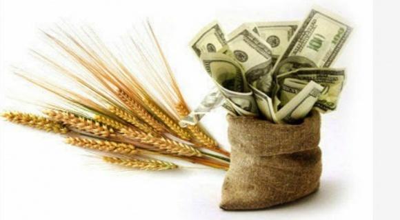Доля фермерских займов в банках за последние годы не увеличилась фото, иллюстрация