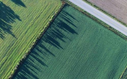 Банкіри спрогнозували рівень здешевлення кредитів у разі використання землі як застави фото, ілюстрація