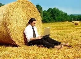 Банки знизили відсоткові ставки на кредитування агробізнесу фото, ілюстрація