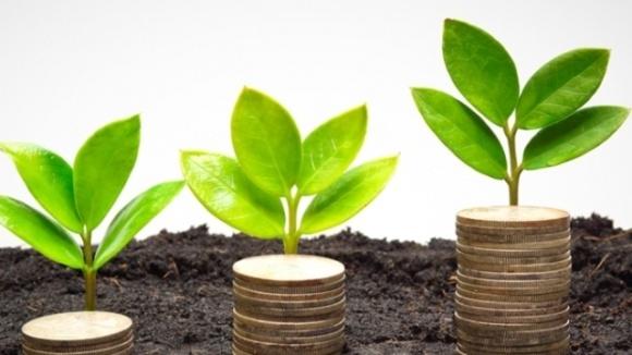 Деньги в рост: как банки финансируют аграриев в условиях посевной фото, иллюстрация