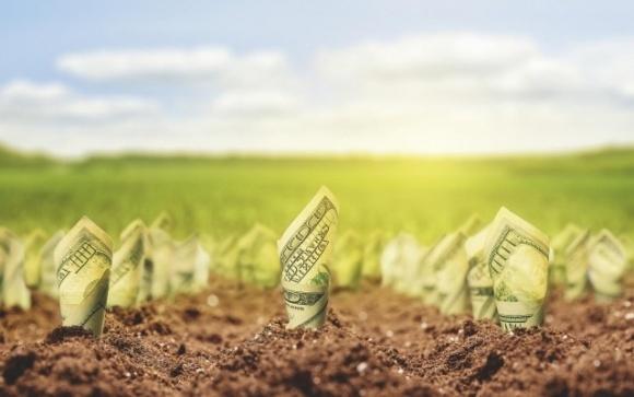 Аграрии Винниччины могут получить быстрый кредит онлайн в 21 банке фото, иллюстрация