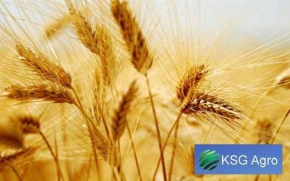 Агрохолдинг KSG Agro збільшив земельний банк майже до 24 тис. га фото, ілюстрація