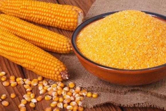В Украине есть все предпосылки для развития  переработки кукурузы фото, иллюстрация