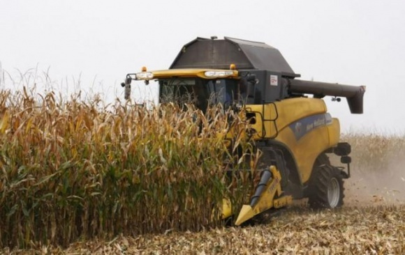 В 2017/18 МГ урожай кукурузы в Украине будет на 10% меньше, чем в прошлом сезоне фото, иллюстрация